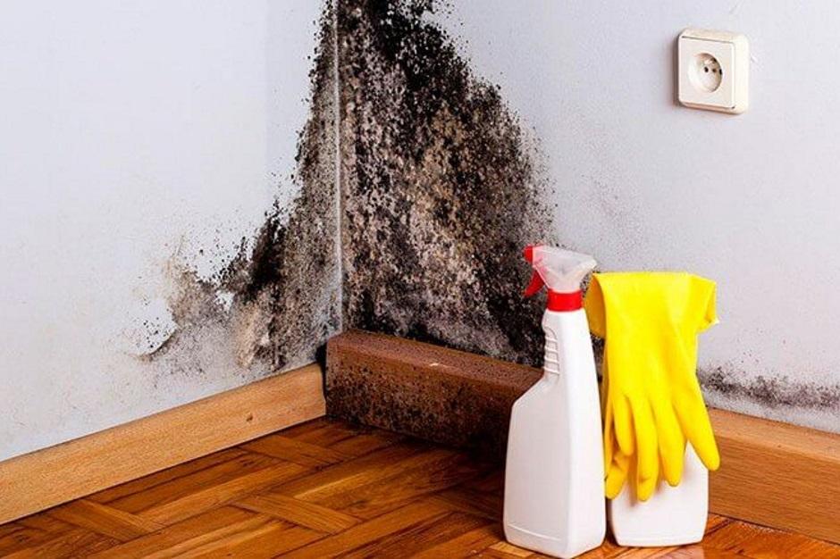 Причины сырости в доме и как с ними справиться