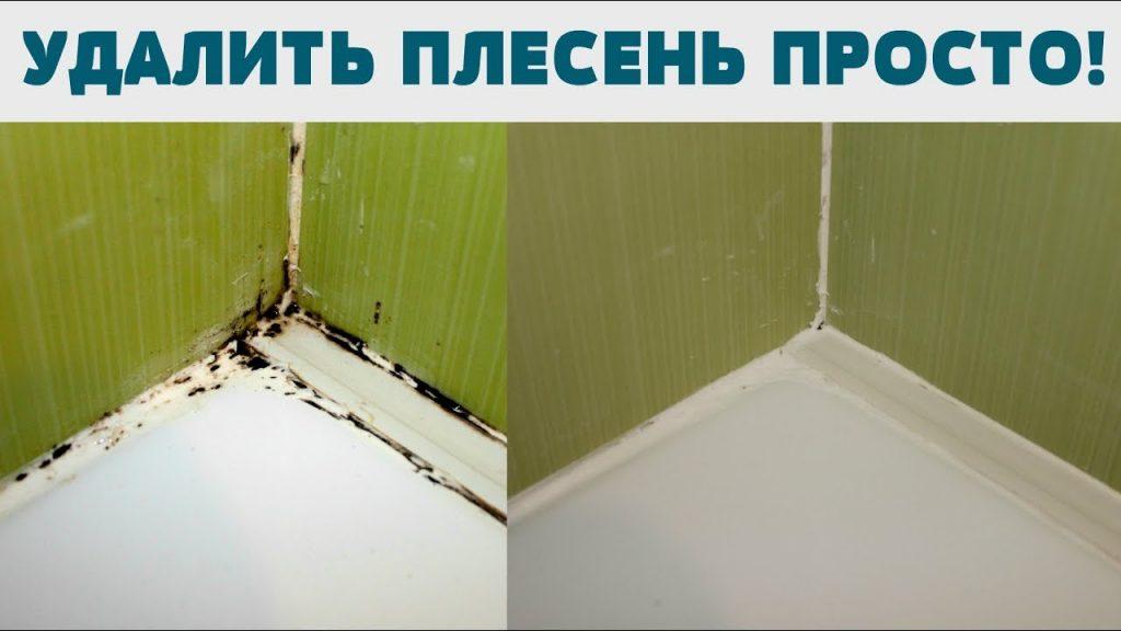Как избавится от плесени в ванной комнате